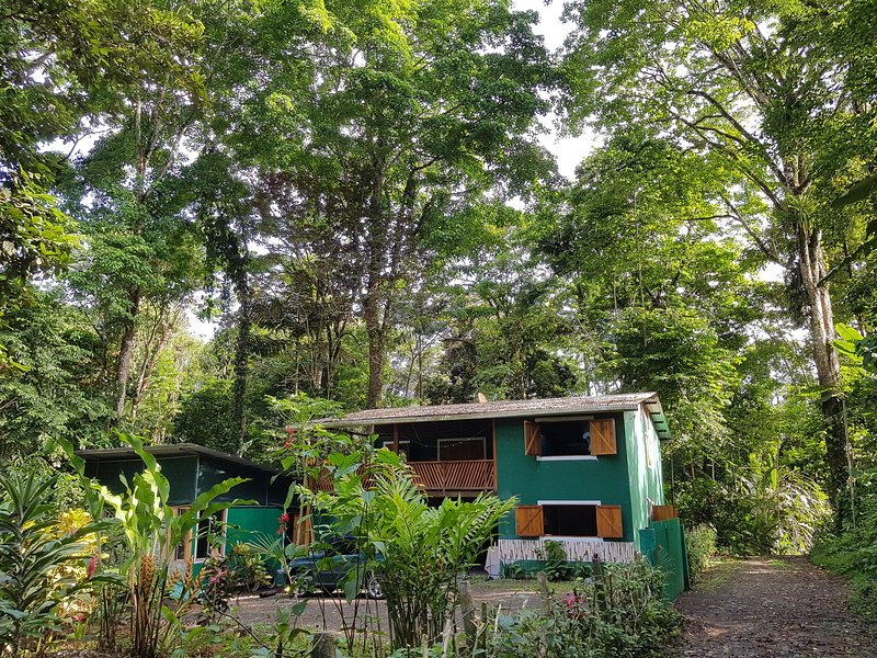 The Green Jungle House, holiday rental in Playa Chiquita