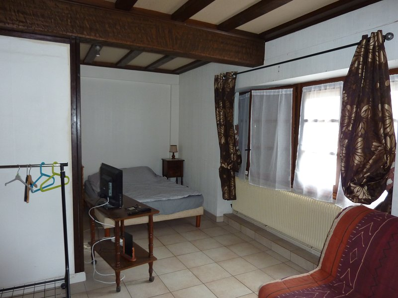 Large private room in the city center with terrace access and balcony.