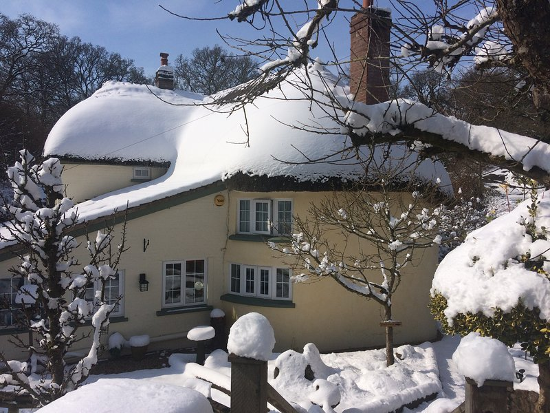 frogmill updated 2019 3 bedroom house rental in exeter with secure rh tripadvisor com