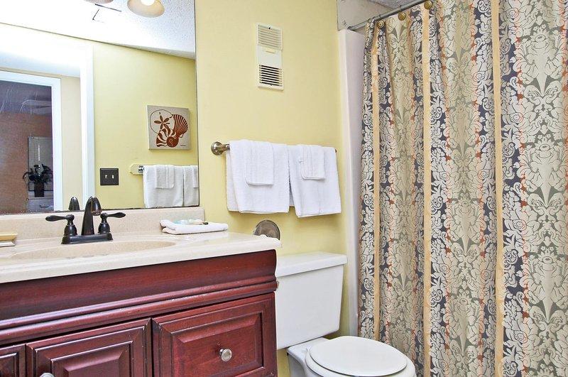 Salle de bain du couloir