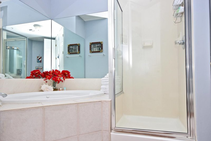 Stand Up Shower and Jetted Tub