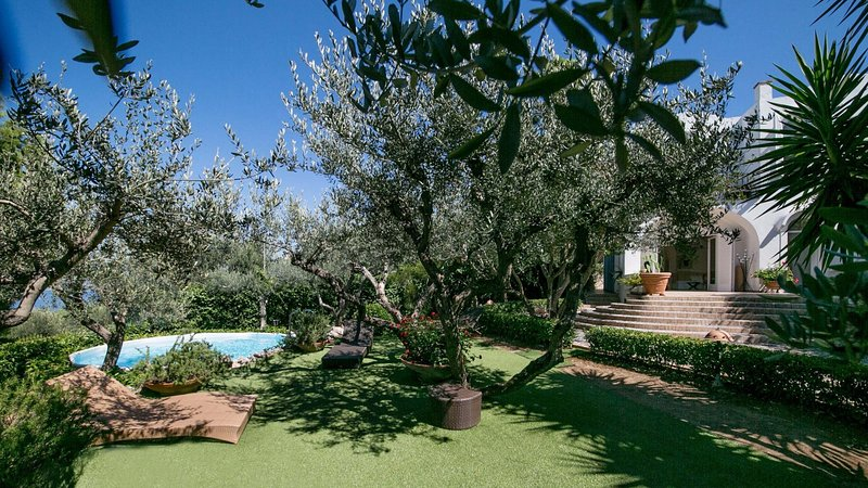Luxury villa Ambra, location de vacances à Anacapri