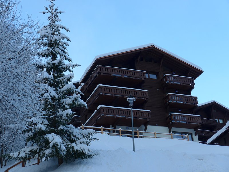 A great ground floor apartment, vacation rental in Grimentz