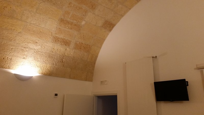 panoramic ground floor vaulted room.