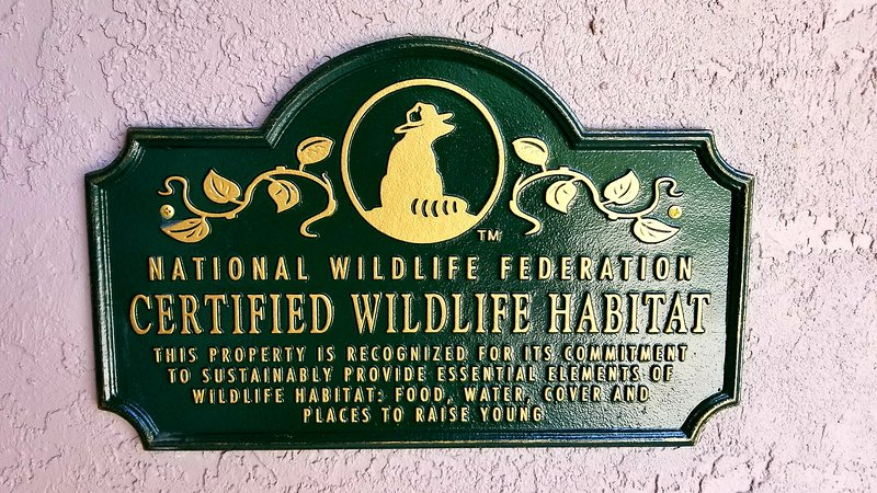 Certified Wildlife Habitat for butterflies
