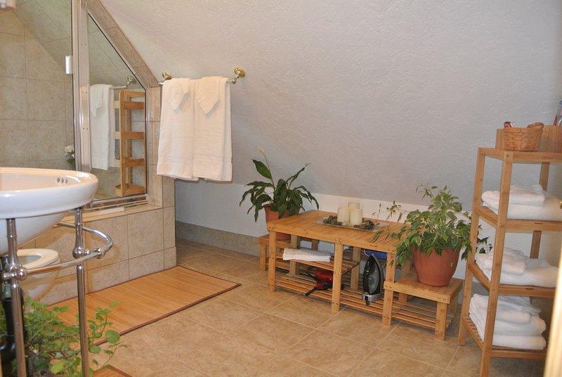 Baño con artículos de aseo gratuitos; champú, acondicionador, gel de baño, jabón corporal, y pasta de dientes y cepillo.
