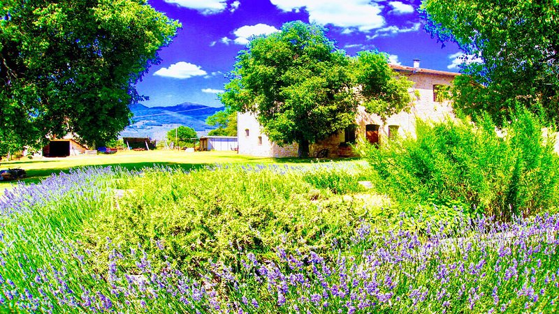 Poreta Bio Farm Suite B - Rome/1 hr 15 mins, vacation rental in San Giacomo