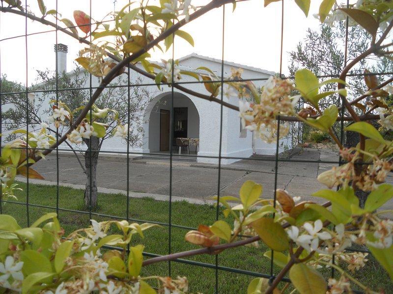 Per un soggiorno di Benessere, sole, mare e relax, location de vacances à Metaponto