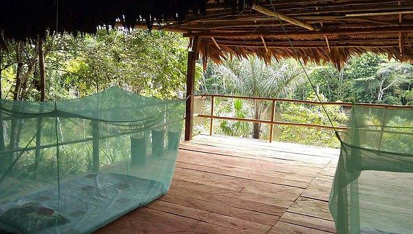 Jungle Lodge 2, location de vacances à Iquitos