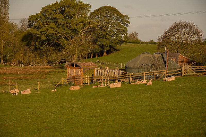 Fordhall Organic Farm Yurts, holiday rental in Audlem