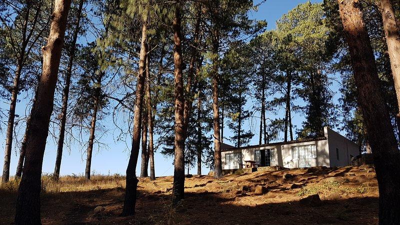 Tegwaan Country Getaway – Pine Cottage, alquiler de vacaciones en Mpumalanga
