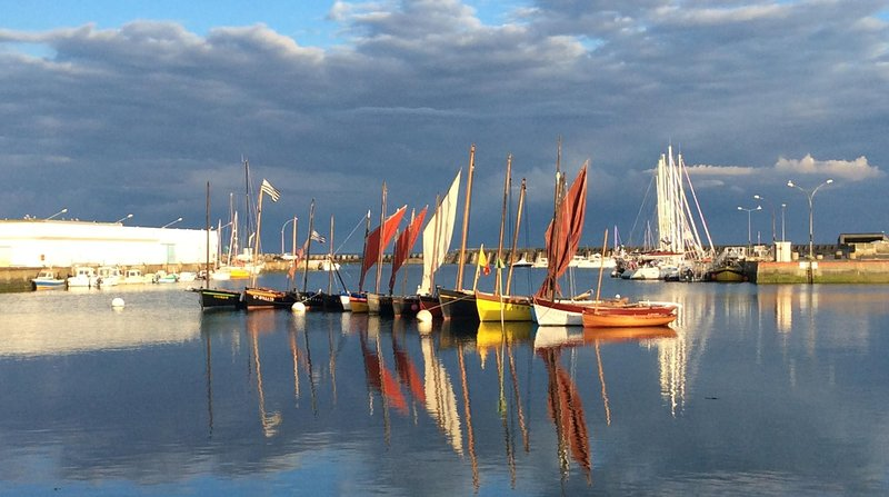 Line of misainiers of the port of Lesconil (photo port hotel)