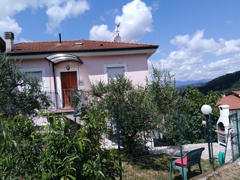 veduta della casa con scorcio del giardino con alberi di ulivo
