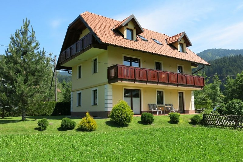 Villa Planina - First floor apartment, holiday rental in Tarvisio