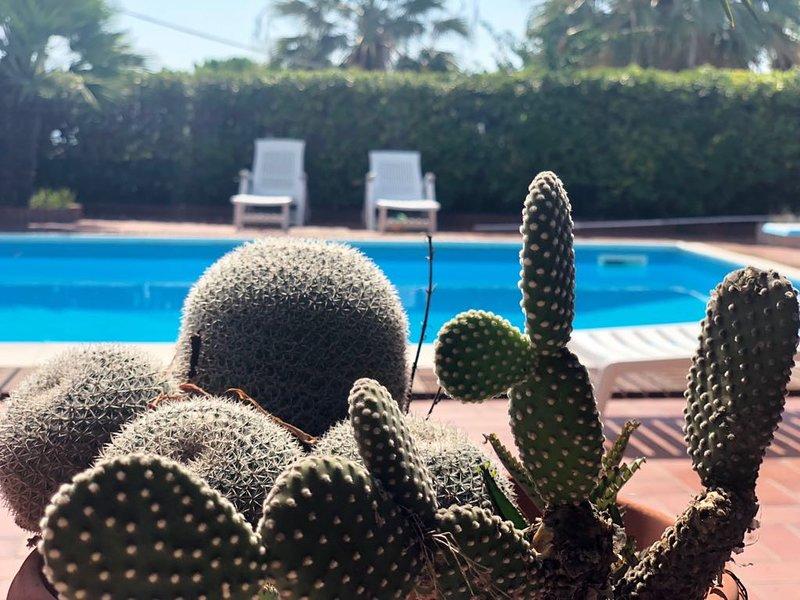 Villa con piscina Capo Vaticano-Tropea 8 posti letto, holiday rental in Frizza