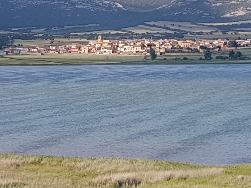 View of an area of ​​the Laguna with Gallocanta in the background