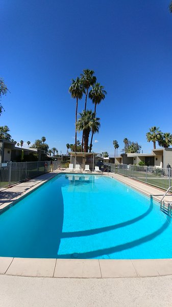 View of Pool.  The condo is on the left, less than 20 feet from the pool.