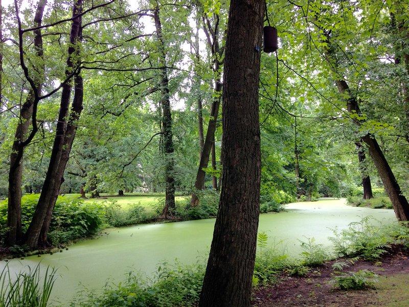 Summer: nearby the more beautiful garden of Berlin, Tiergarten