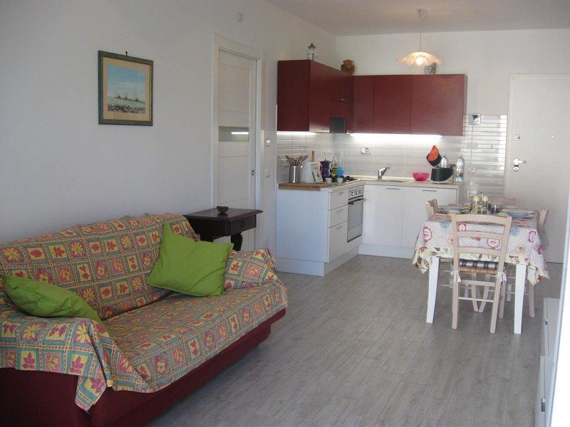 Kitchenette living room tv sofa bed