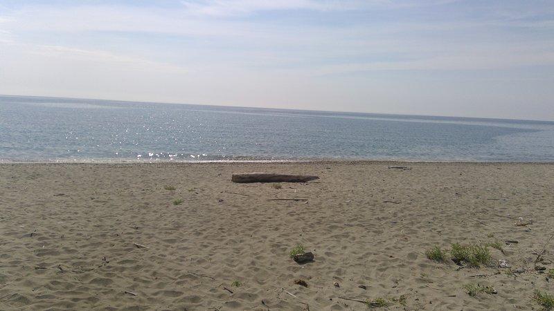 Cosy : appart 2 chambres 100m de la plage, alquiler de vacaciones en Santa Lucia di Moriani