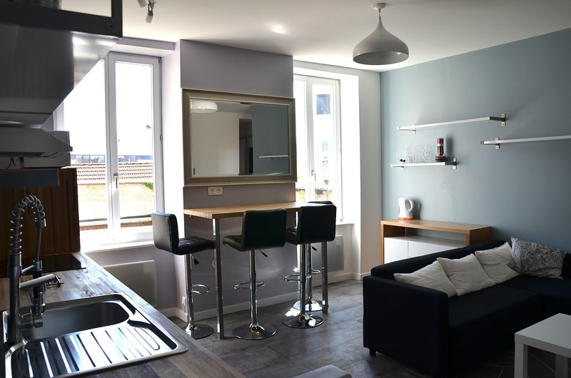Nice apt with garden & Wifi, holiday rental in Nancy