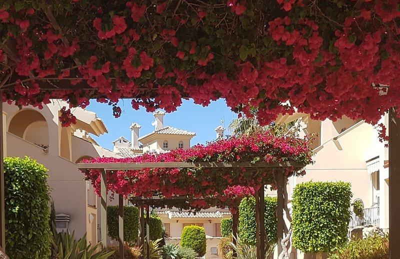 PAUL'S PLACE - Albatros - 3 bedroom TownHouse poolside with air con/heat & wifi, vacation rental in El Carmoli