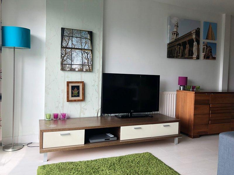LIVING ROOM / LARGE SCREEN TV