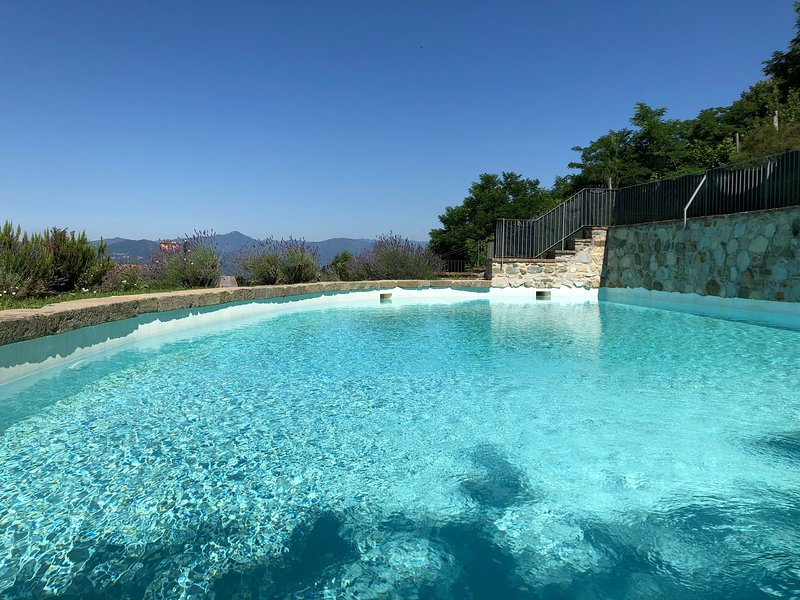 PODERE BEATRICE 20Pax Large Pool, Free WiFi, BBQ near to 5 Terre and Beach Clubs, holiday rental in Fivizzano