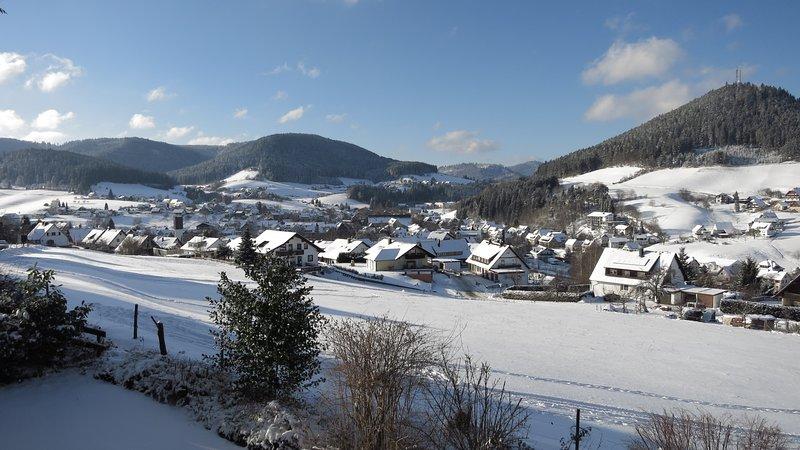 hermoso paisaje de invierno directamente en frente de la terraza