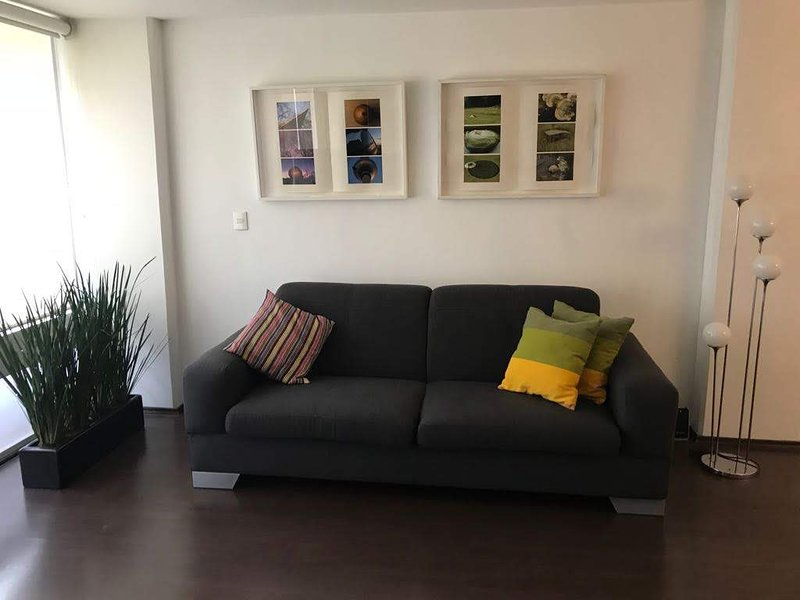 Cosy loft well located, vacation rental in Mexico City