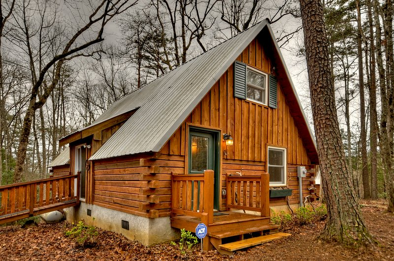 Triple Treat- Rustic Cabin near Blue Ridge, vacation rental in Epworth