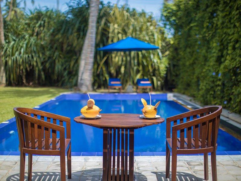 Azafrán y azul - Villa piscina