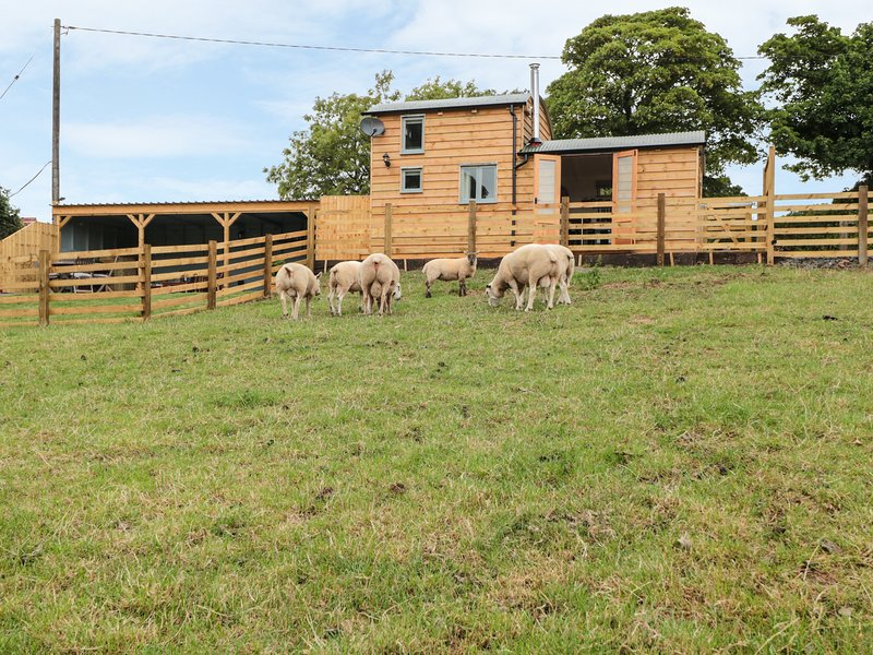 SHEPHERDS CABIN, beautiful scenery, ideal for couples, Clee Hill, vacation rental in Ludlow