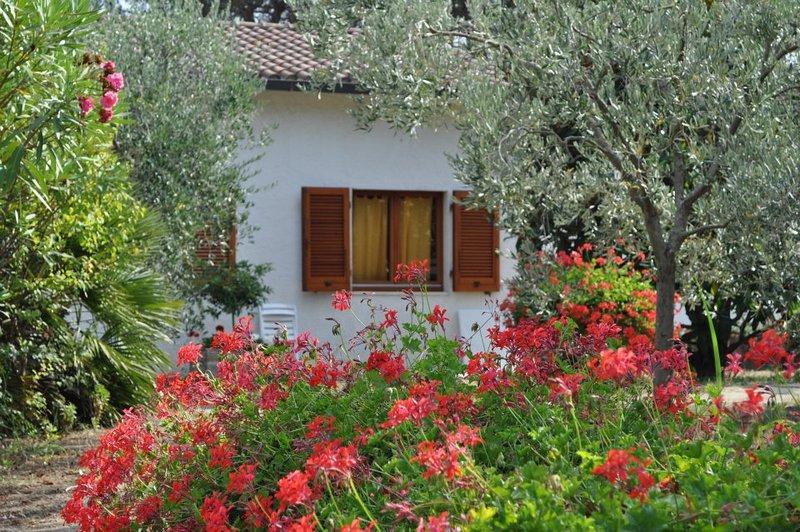 Amazing house near the beach, vacation rental in Lacona