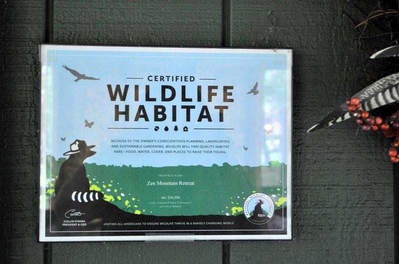 Assista a vida selvagem local!