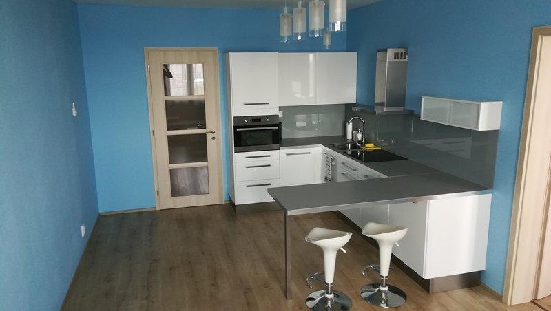 Big Apartment Rezidence Eliska, vacation rental in Ricany