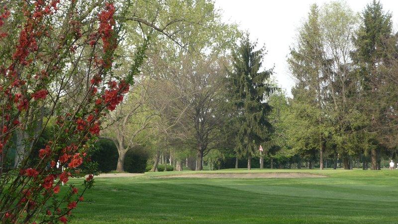 Club de golf Stupinigi