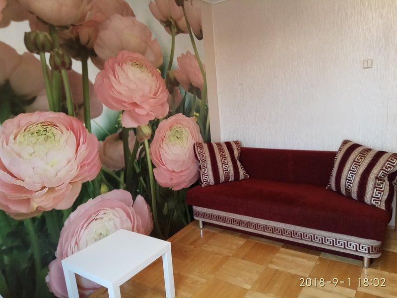 BORISOVSKIE PRUDY2, holiday rental in Podolsk