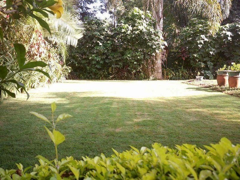 Runda lovely one bedroom guestwing letting, holiday rental in Ruaka
