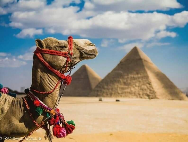 Vacation in Egypt, holiday rental in Kafrat al Jabal