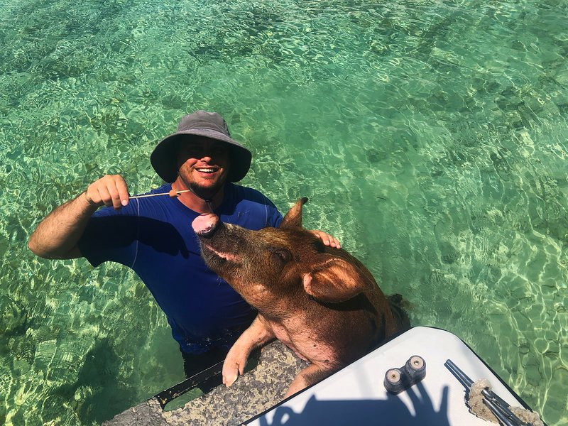 Swimming and feeding the pigs with our Captain is a guest favorite!!!