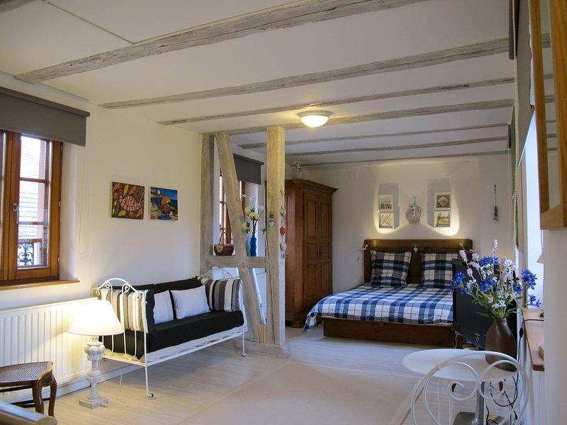 Charmante petite maison Branhiesel près du Parc Regional des Vosges du Nord, holiday rental in Oberbronn