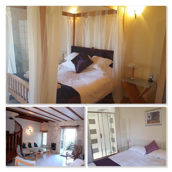 Au Canard Bleu/The Blue Duck B&B, holiday rental in Tournon-d'Agenais