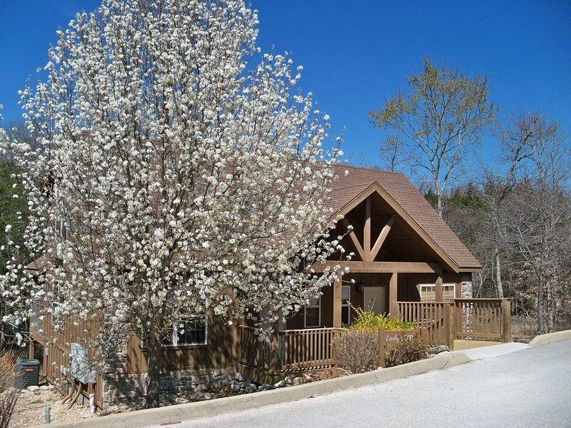Woodland Romance Cabin, Pets, Fishing, Golf, Pool, Playground, FUN!, location de vacances à Galena