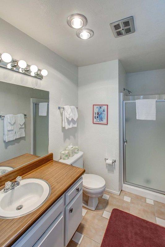 Chamonix #096 - Guest bathroom with shower