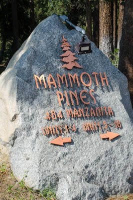 Mammoth Pines #02        - Mammoth Pines in Mammoth Lakes