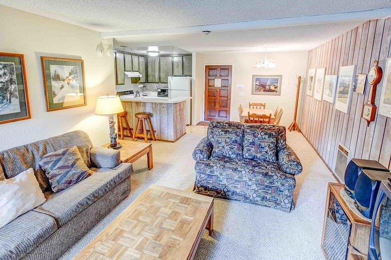 Chamonix #025            - Open floor plan living room and kitchen