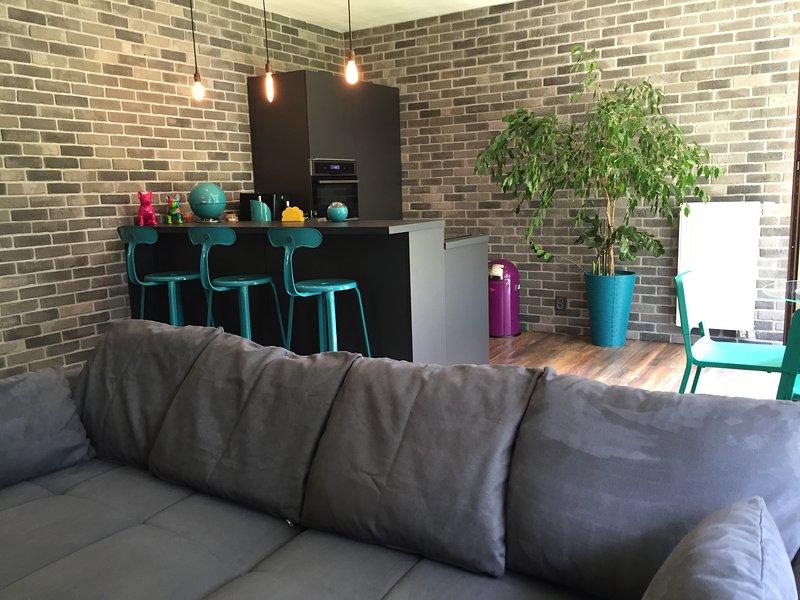 Modern apartment with a large garden, location de vacances à Pysely