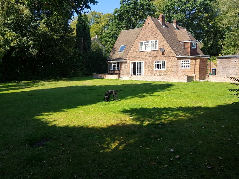 Virginia Guest House, vacation rental in Chertsey