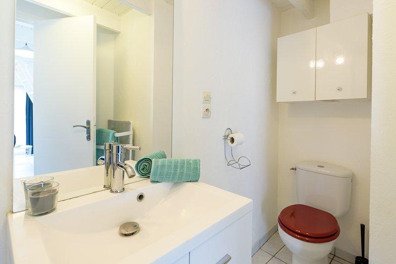 Doucheruimte met douche en wc Penty 2